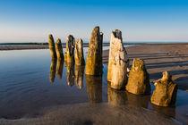Buhnen an der Küste der Ostsee by Rico Ködder