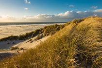 Landschaft mit Dünen auf der Insel Amrum by Rico Ködder