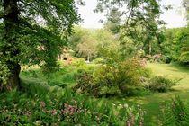 Garten in Kent by Frank  Kimpfel