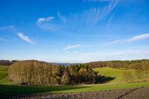 Ein Hauch von Frühling liegt über der Landschaft by Ronald Nickel