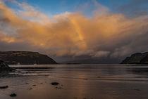 View of Rassay Sound from Loch Portree, Isle of Skye, Scotland von Bruce Parker