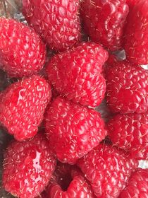 Raspberry von giart