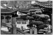 chinese teahouse by la-mola-lighthouse