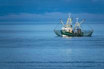 Krabbenkutter auf der Nordsee von Rico Ködder