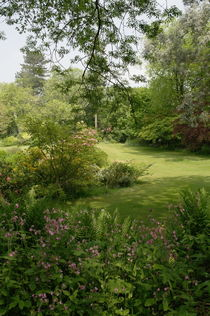 Garten in Kent von Frank  Kimpfel