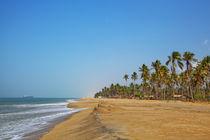 Traumhafter Badestrand an der Küste bei Marawila auf der tropischen Insel Sri Lanka von Gina Koch