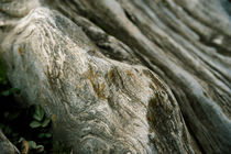 Steinstruktur von Manfred Herrmann