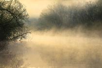 Mystischer Morgen von Bernhard Kaiser