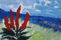 Madeira | Impression mit Aloe Ferox von Karoline Stuermer