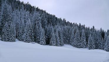 Somewhere-in-tatra-mountains