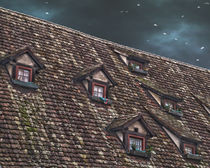 Roof of the Hotel oblique house Ulm by Michael Naegele