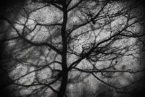 Verworren by Bastian  Kienitz