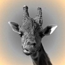 Nostalgie Giraffe von kattobello