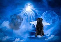 Black Pug Dog Angel standing on heaven's door von Sapan Patel