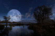 Moon over the Dnieper River by maxal-tamor