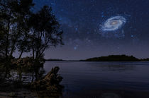 Starry night over the Dnieper River in Kiev by maxal-tamor