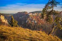 Burg Wildenstein II by Christine Horn