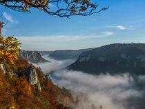 Nebelschlange by Christine Horn