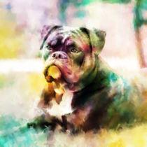 Bulldog Painting Colorful Art by Sapan Patel