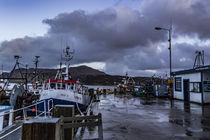 Ben Tianavaig across Loch Portree, on the Isle of Skye, Scotland by Bruce Parker