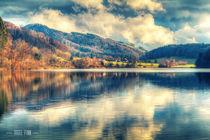 Reflections On A Lake by Nigel Finn