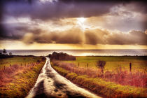 To The Sea by Nigel Finn