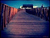 ~ Go your Way ~ von Sandra Vollmann
