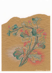 Plante 3 - 211216 by Anastassia Elias
