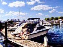 Wiggins Park Marina von Susan Savad