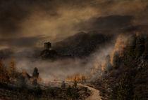 Der Weg in den Nebel von Simone Wunderlich