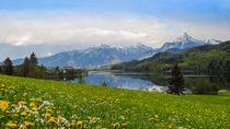 Weißensee bei Füssen by Christine Horn
