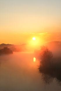 Die Sonne kommt von Bernhard Kaiser