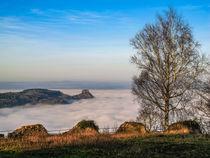 Hegau im Nebel von Christine Horn
