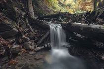 Stalllauer Bach Wasserfall by Rolf Meier