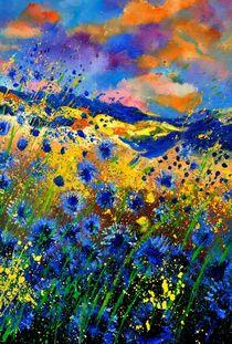 blue cornflowers von pol ledent