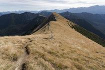 Geißsprungkopf Südseite von Rolf Meier