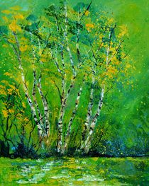 birchtrees 4551 by pol ledent