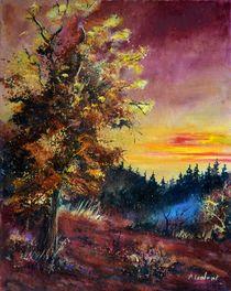 oak at sunset von pol ledent