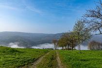 Sonniger Weg in den Nebel by Ronald Nickel