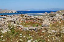 Ruins and wild flowers von Yuri Hope