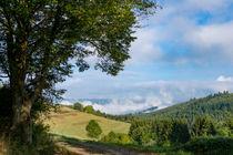 Die Wolken entsteigen dem Tal by Ronald Nickel