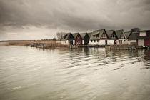 Ahrenshoop Hafen by dresdner