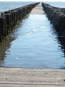 Ein Steg wie ein Leben/A footbridge like a life by Patti Kafurke