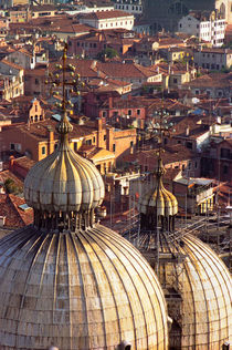 Doge's Palace Domes & Venice Rooftops by David Halperin