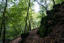 Ein alter Weg führt um den Fels by Ronald Nickel