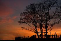 Sonnenuntergang im Hafen von fotolos