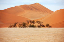 NAMIBIA ... Namib Desert  Dunes I von meleah