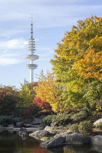 Japanischer Garten mit Fernsehturm im Herbst, Hamburg von Torsten Krüger