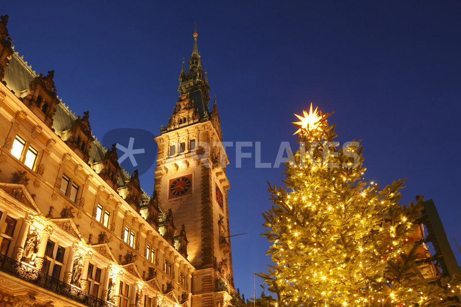 hamburger rathaus mit weihnachtsbaum hamburg fotografie. Black Bedroom Furniture Sets. Home Design Ideas