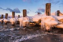 Buhne an der Ostseeküste bei Zingst im Winter von Rico Ködder